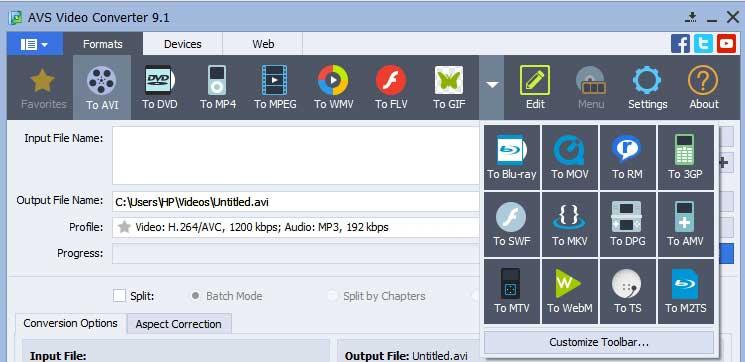 AVS-Video-Converter-Format-Compatibility