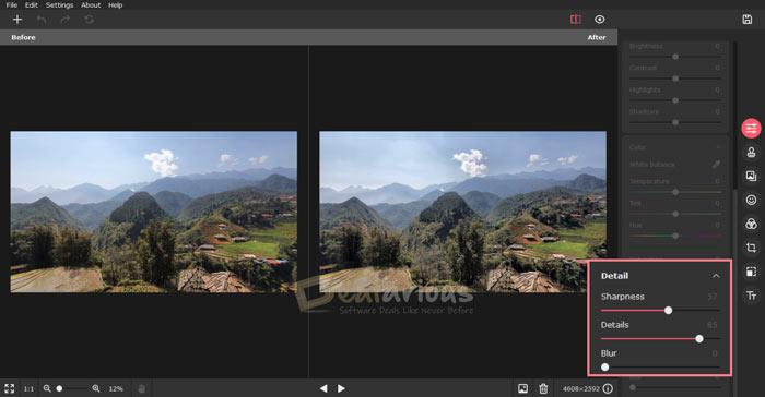 Movavi Picverse photo details adjustment